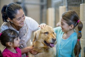 Adopting a Family Pet From the Pound