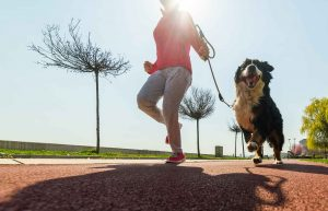 Running with your dog is good pet exercise