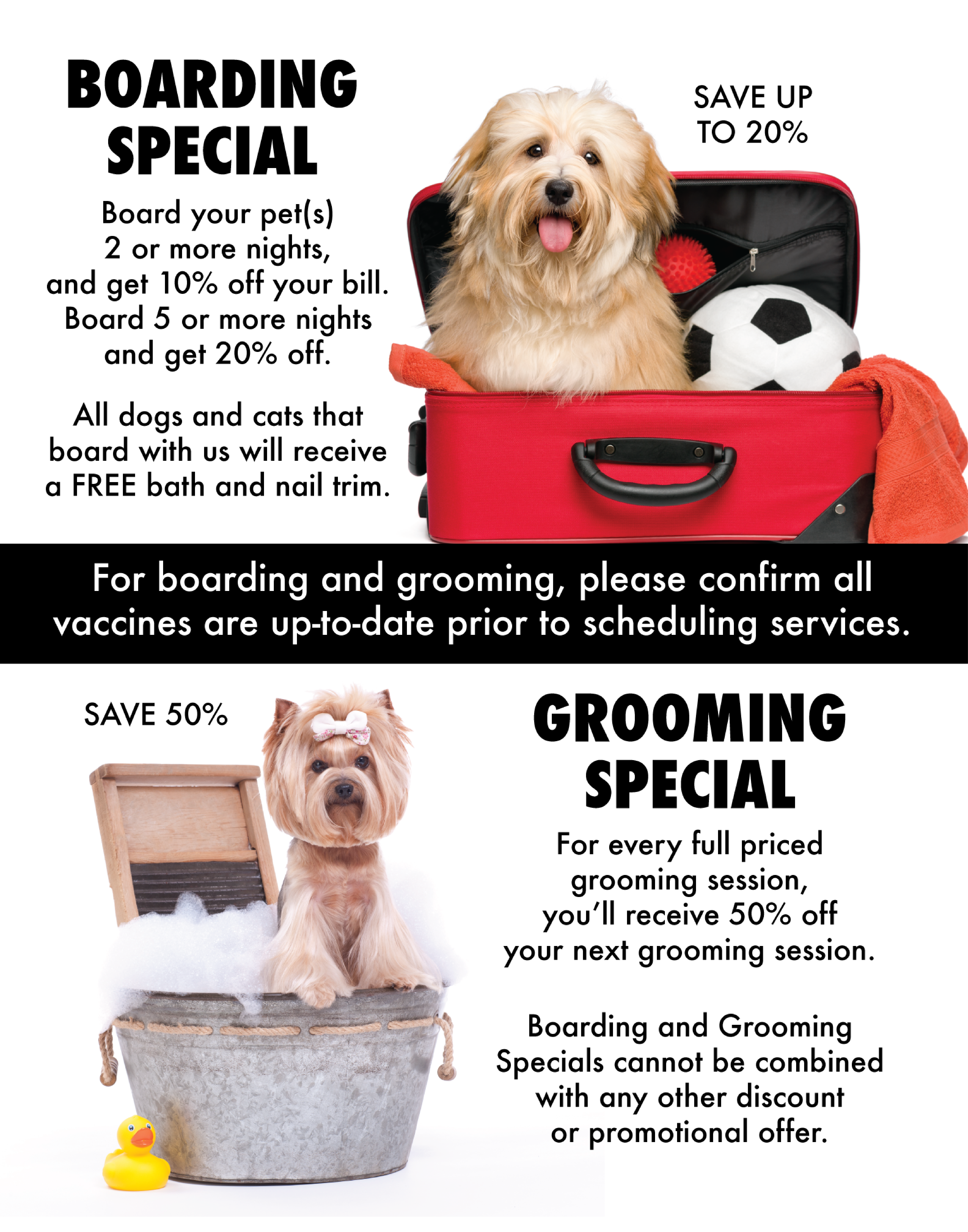 Mobile Dog And Cat Grooming In Aiken Sc